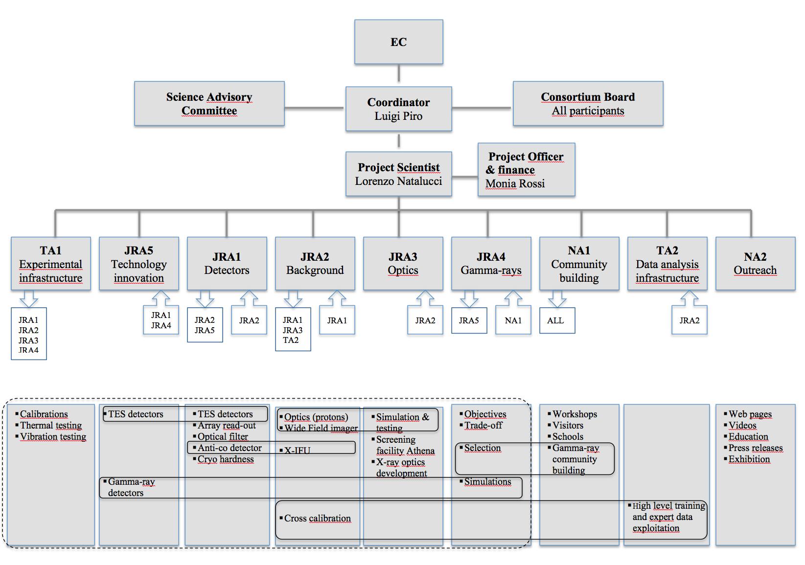 Organisational Chart · AHEAD